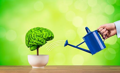 rééducation cognitive